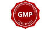 Logo-GMP_175x100